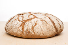 Round loaf of bread Stock Image