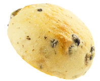 Round loaf of raisin Royalty Free Stock Images
