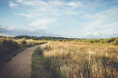 Round Near Green Grass Field Royalty Free Stock Photography