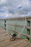 Round net used for capturing pelicans Royalty Free Stock Photography