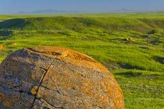 Round orange boulder covered in lichen Stock Photos