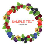 Round ornament. With various berries Royalty Free Stock Image
