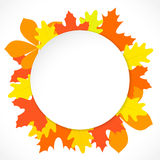 Round paper with autumn leaves on the background, in vector Stock Images
