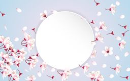 Round paper with cherry blossom flowers stock photos