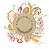 Round papierowy emblemat nad jesieni jedzeniem Ręka rysująca wektorowa ilustracja ilustracja wektor