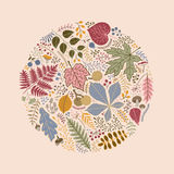 Round pattern of leaves, berries and branches Royalty Free Stock Photo