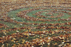 Round patterns made with autumn leaves Royalty Free Stock Images