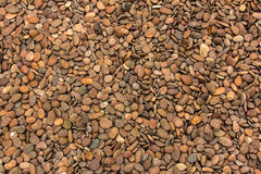 Round peeble stones Stock Image