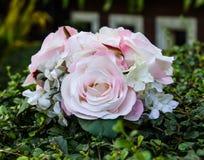 Round pink roses Stock Photos