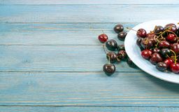 Fresh Overripe ripe Cherries on Blue Rustic Wooden Background. Round plate of fresh ripe cherries on old wooden background for design montage. Blue wood table royalty free stock photos