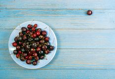 Fresh Overripe ripe Cherries on Blue Rustic Wooden Background. Round plate of fresh ripe cherries on old wooden background for design montage. Blue wood table stock images