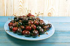 Fresh Overripe ripe Cherries on Blue Rustic Wooden Background. Round plate of fresh ripe cherries on old wooden background for design montage. Blue wood table royalty free stock image