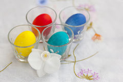 Round of plate with several colorful easter eggs and white orchid Royalty Free Stock Photo