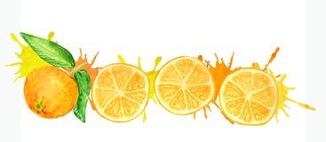 Round pomarańcze plasterki z soczystymi pluśnięciami royalty ilustracja
