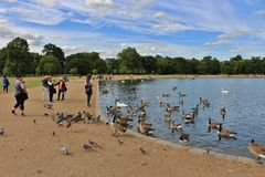 The Round Pond, Kensington Gardens Royalty Free Stock Images