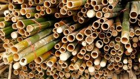 Round przecinający pokrojony bambusowy bagażnik wiąże w stercie przygotowywającej dla używa jako budynku materiał budowlany w Asi zdjęcie wideo