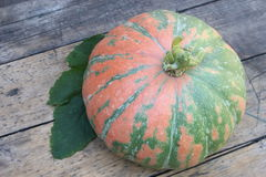Round pumpkin on board Stock Photography