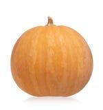Round pumpkin Stock Image