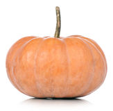 Round pumpkin Royalty Free Stock Photography