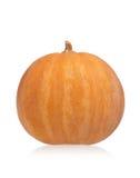 Round pumpkin Stock Photography
