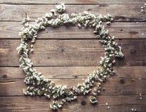 Round rama od kwiatów czereśniowi okwitnięcia na drewnianym tle Rocznik Zdjęcie Royalty Free