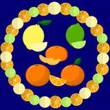 Round rama od plasterków pomarańcze, wapno i cytryna na ciemnym tle, Fotografia Royalty Free