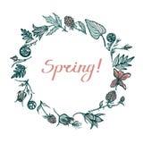 Round rama z wiosen roślinami Gratulacje wiosna literowanie Geum Rivale, paprocie, moroszki, drewniany fiołek remisu ręki papieru ilustracji