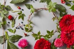 Round ramowy wianku wzór z kwiatów pączkami Fotografia Stock