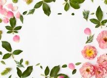 Round ramowy wianku wzór z wzrastał kwiaty, płatki, sukulent Fotografia Stock