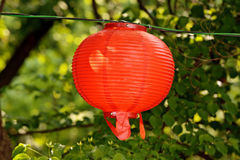 Round red lantern on blurry floral green background Royalty Free Stock Photo