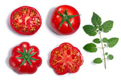 Round and ribbed Tomatoes, leaf, top view, paths Stock Image