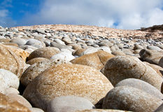 Round rocks on the beach Stock Image