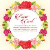 Round rose card Royalty Free Stock Image