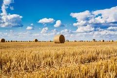 Round słoma bele w zbierających polach i niebieskie niebo z chmurami Zdjęcie Royalty Free