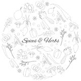 Round Set with Herbs And Spices. Hand Drawn Round Set with Herbs And Spices outline icons Royalty Free Stock Photography