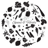 Round Set with Herbs And Spices. Hand Drawn Round Set with Herbs And Spices silhouette icons Stock Image