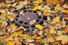 Round sewer manhole with leaves Royalty Free Stock Photo