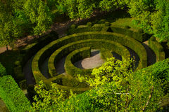 Round shape labyrinth green bush in Luxembourg. In summer time Stock Photo
