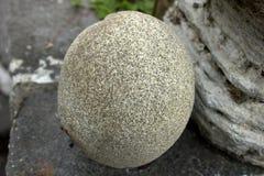 Round skała obraz stock