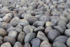 Round sleeky cobbles Royalty Free Stock Photos
