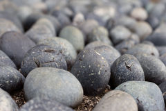 Round sleeky cobbles Royalty Free Stock Photography
