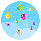 Round small fun fishes Stock Image