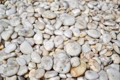 Sea ​​pebbles, smooth white stones royalty free stock images
