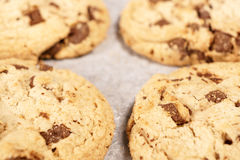 Round soft bake chocolate chip cookie stock image