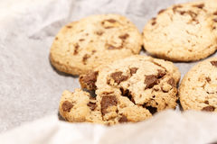 Round soft bake chocolate chip cookie royalty free stock images