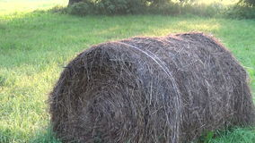 Round stack of straw stock footage