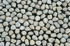 Round stone on the black soil. Royalty Free Stock Photo