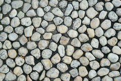 Round stone on the black soil. Stock Photos