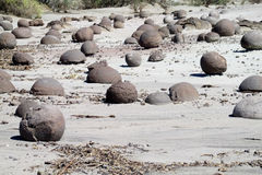 Round stones landscape Royalty Free Stock Photos