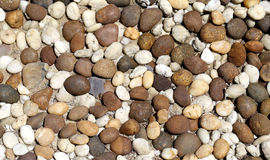 Round stones Stock Photography